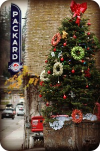 It's looking like Christmas in downtown Grass Valley!
