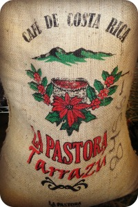 Costa Rican bag